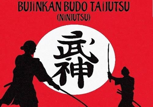 Bujinkan Budo Taijutsu (Ninjutsu)